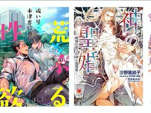 9月に購入したBL小説(全5冊)