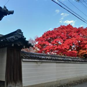 京都の秋と貴船神社のお守り