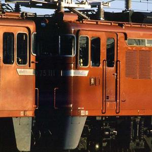 ED75 CLASSIC 63