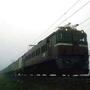 ED75 CLASSIC 67
