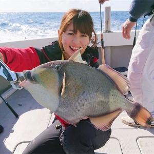 南海の謎の謎の謎のお魚。あなたはだあれ?