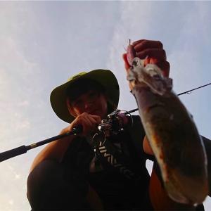 南薩イカ釣り行脚‼️鹿児島の暑さにめげずになんと…