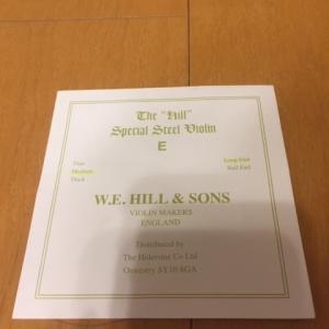 W.E.HILL & SONS