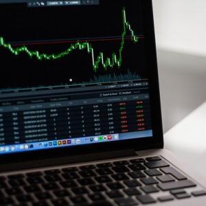 市場はなぜか高騰!ミニマリストの投資事情2020.11