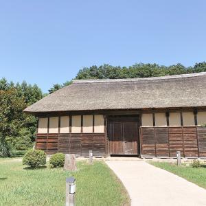 【宮城帰省】2日目は東北歴史博物館へ