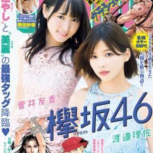 【調査】<世間が知っている欅坂46メンバー>菅井友香と渡邉理佐が2位!1位は?