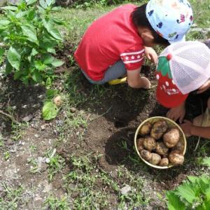 都市農業は儲かる!?変わる農業の未来❗❗
