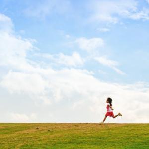 日本の環境意識の低さによる再生エネ導入の遅れ