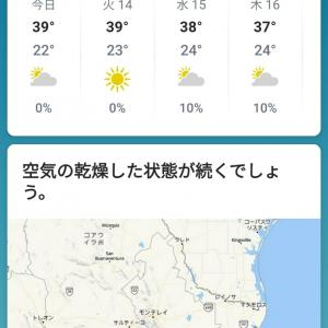 No.115 暑い!!!