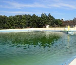 珍しく日曜日に釣りです。川越水上公園のプールでフライフィッシング!!