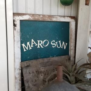 maro-san。