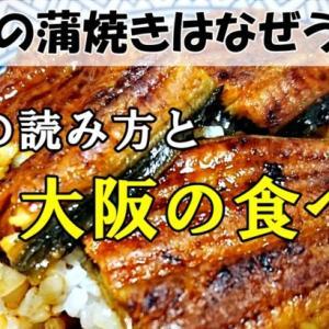 うなぎの蒲焼きはなぜうまい?鰻重の読み方と大阪の食べ方と値段