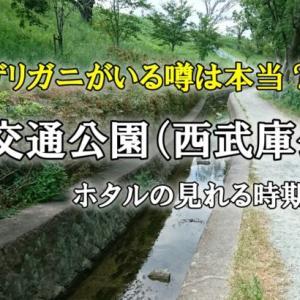 尼崎交通公園(西武庫公園)とザリガニ釣りスポット?(ホタルの時期も)
