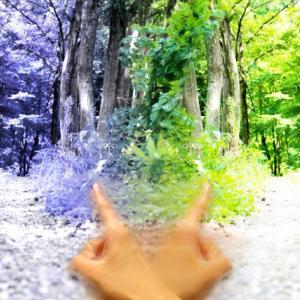 人生の選択肢が増えたのに精神的に病む人が増えた理由と対処方法