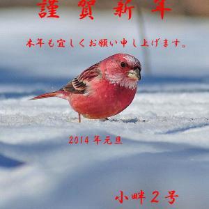 新春のお慶びを申し上げます。