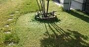 草刈りとベンチャーズ