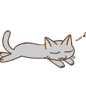 イケてる証拠だけど…くさい猫のおしっこの臭いを簡単に取る方法!