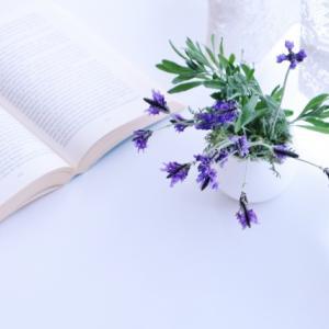 「繊細さん」の本の感想 HSPが実践できる具体的対処法がいっぱい