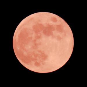 ストロベリームーン2020年はいつ?実際本当にピンクの月?