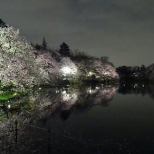 地獄の井戸は京都にもある?地獄の入口と出口(黄泉がえりの井戸)の場所