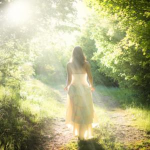 脳内から行動をかえる瞑想