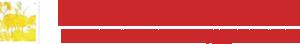 ALESSIA - ABSOLUTE RETURN FX Class R はとにかくコンサバなFX投資するファンド