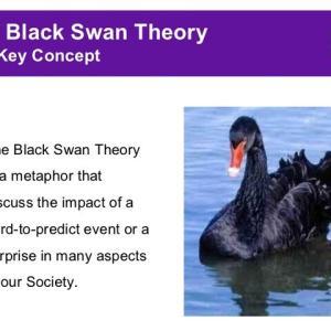 金融マーケットにおけるブラック・スワンとは? black swan theory その本質は予測不可能な事象を予測すること
