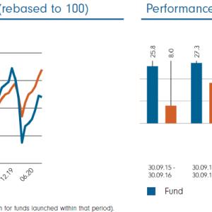 Fidelity Funds Nordic Fund A-SEK フィデリティのノルディックファンド スウェーデンクローネ建てのファンドはハンサードからも買える