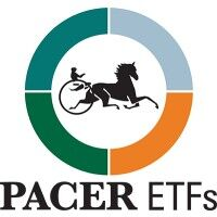 Pacer CSOP FTSE China A50 ETF 日本の3倍もの全世界GDPシェアを持つ中国に投資しておかない手はない