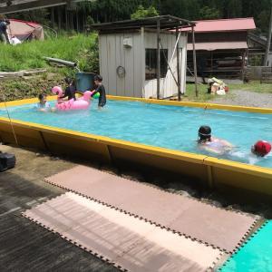 マルチーズおもち  姪っ子達のプール見学