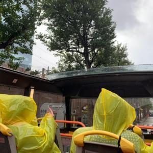 雨のオープントップバス