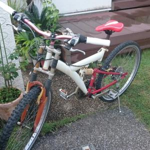 自転車  20年の愛機