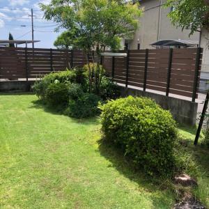 除草と芝庭 そして植物たち