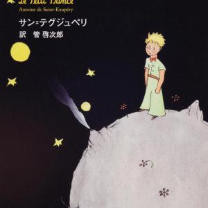 「星の王子さま」は、ただのキャリアコンサルの本です。