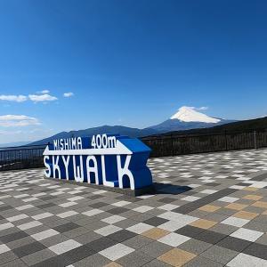 三島スカイウォーク、富士見の揺れるつり橋「伊豆と車中泊-10-」