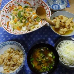●中華炒めの餡煮 ・筍の土佐煮 ●冷やし中華 ・味噌焼きおにぎり ・コーンの天ぷら ~まゆげ犬~