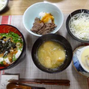 ●漬けとろろ丼 ・牛肉のおろし添え ・餡かけラーメン ・親子丼 ・もみじ舞茸の天ぷら