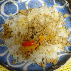 ●ガパオライス ・焼き鳥 ・麻婆ラーメン ・よこすか海軍カレー ・二条城ふる田のお弁当