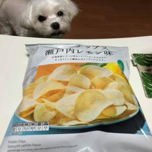 ポテトチップス!ファミリーマートの「瀬戸内レモン味」