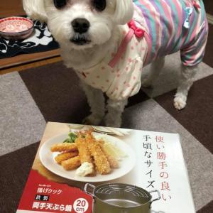 天ぷら鍋をいただきました!1人揚げ物祭り開催!