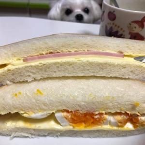 手作りサンドイッチ!自分で作るとより美味しい!