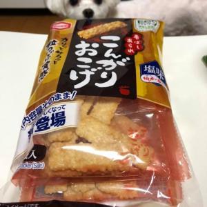 亀田製菓の「こんがりおこげ」