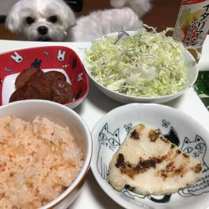 NOWハンバーガーとかじきの西京漬け!