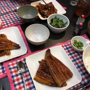 うなぎ!ウナギ!鰻!豪華な夕食!