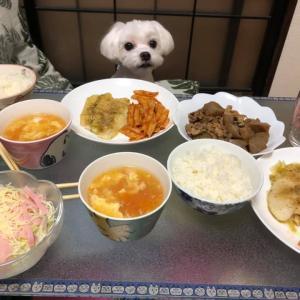 豪華盛りだくさんの昼食!