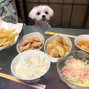 大好きづくし!品数いっぱい豪華な夕食!