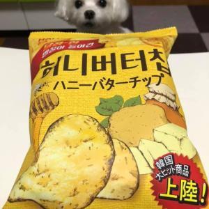 韓国大ヒット商品上陸!ハニーバターチップ!