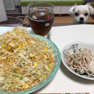 相変わらずの夕食