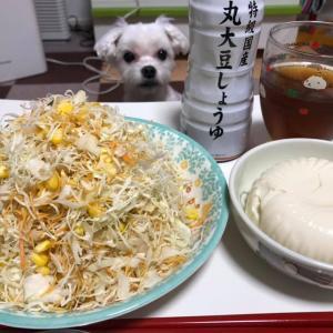 無限キャベツのもととお豆腐