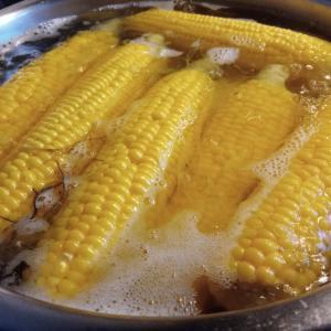 とうきびは、お湯を沸かしてから畑に採りに行け!